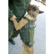 verseidag-proteccion-canina-03-800x800px-8bit
